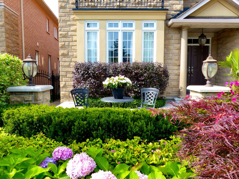Front lawn flower and shrubs planting and maintenance